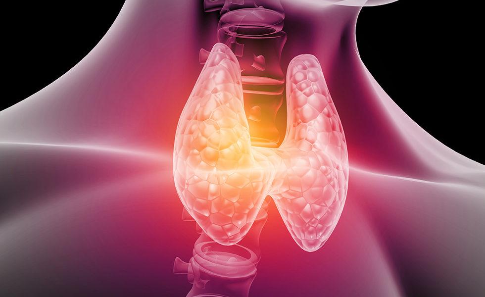 mal-di-stomaco-e-diarrea-quando-la-colpa-e-della-tiroide-1-biochetasi